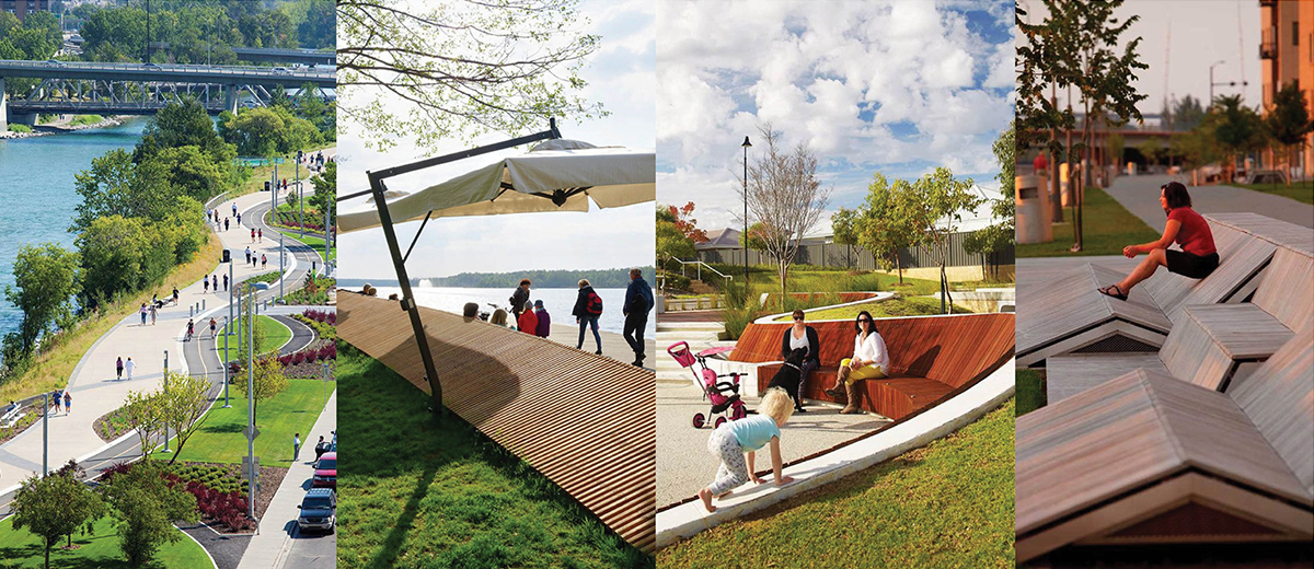 Image montage showing lakeside elements, including pathways, planting, topography and seating.